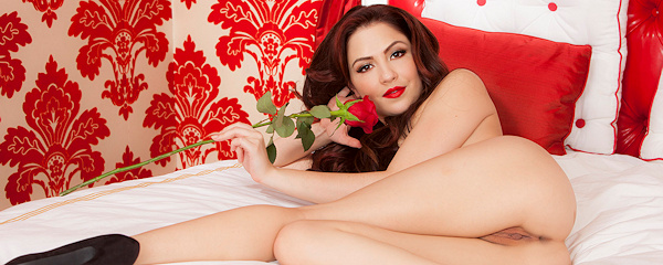 Cassie Laine – Czerwona róża