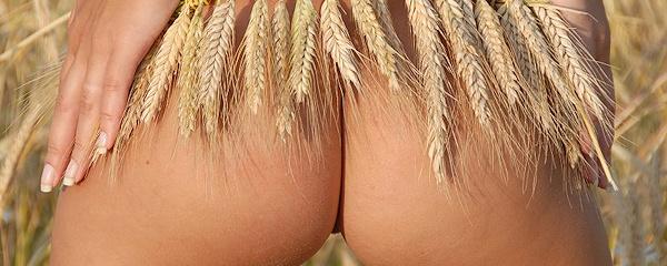 Izabelle na polu zbóża